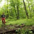 Exploring Chimney Falls.- Exploring Chimney Mountain in the Adirondacks