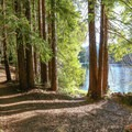The Highland Loop Trail at Loch Lomond includes picturesque walking along the lake's edge.- Destination Santa Cruz: Your Gateway to the Outdoors