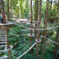 Mount Hermon's Sequoia Aerial Adventure includes traversing a number of aerial trails on the center's challenging elements.- Destination Santa Cruz: Your Gateway to the Outdoors