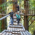Crossing one of Mount Hermon's Sequoia Aerial Adventure's bridges dozens of feet above the forest floor.- Destination Santa Cruz: Your Gateway to the Outdoors