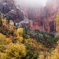 Autumn brings a new vibrance to Zion National Park. Photo by Enlighten Photography.- How to Explore Zion National Park in the Off-Season