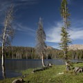 The Uinta Mountains are perfect in summer. Daytime temperatures reach highs in the 70s to low 80s.- Going with the Flow: Seasonal Travel Tips