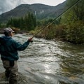 Fly fishing on the Green River. Photo by Trip Jennings of Balance Media. Provided for use by Cascade Forest Conservancy.- Can We Protect Mount St. Helens From Strip Mining?