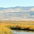 Stillwater National Wildlife Refuge, NV.- National Wildlife Refuge System