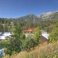 Summer brings out countless wildflowers.- Adventuretown: Sundance, Utah