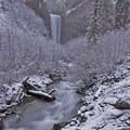 A snowy trail into Tamanawas Falls.- Oregon's Best Winter Waterfalls