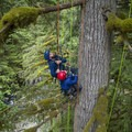 Damien expertly guides climbers up, focusing on safety for both the climbers and the trees. Kids LOVE this guy! - Growing Up Inside A Douglas Fir