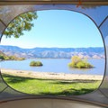A view through the opening in the mesh.- Gear Review: Treepod 6-foot Cabana