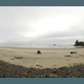 Arcadia Beach.- 9 of the West Coast's Best Tide Pools