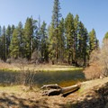 Camp Sherman Campground.- Camping on the Metolius River