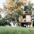Ojai Mountaintop Treehouse. Photo by Ezekiel Gonzalez.- 8 Romantic Treehouses to Stay in this Valentine's Day
