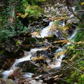 Find some color, flowers, interesting tree branches or anything else to spruce up your shot.- How to Photograph Waterfalls