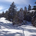 The cross-country skiing trail along Wenatchee Ridge.- Living deep and out of bounds on Washington's Blewett Pass