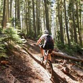Windy Pass + Sawtooth Mountain Loop.- Southern Oregon's Best Mountain Bike Trails