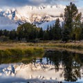 The Grand Tetons at Schwabacher Landing seen from the road to Yellowstone.- Wolf Tracking in Yellowstone National Park