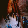 Slot canyon creatures in Zion NP. Photo by Daniel Pouliot.- Woman In The Wild: Mai-Yan Kwan