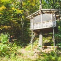 Treehouse in the Woods. Photo by Chantilly W.- 8 Romantic Treehouses to Stay in this Valentine's Day