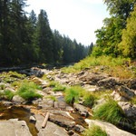 Washougal River, Miles 3-5, Southwest Washington/Mount St. Helens, Outdoor Project